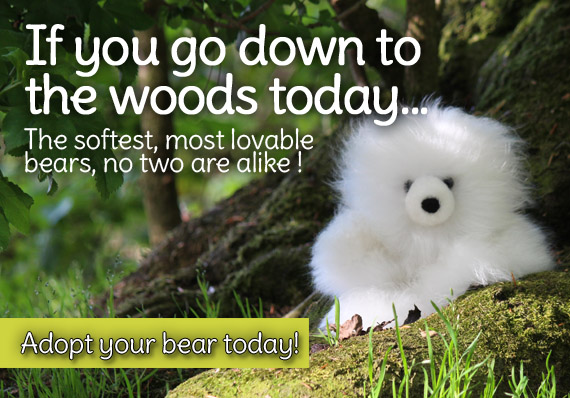 If you go down to the woods today